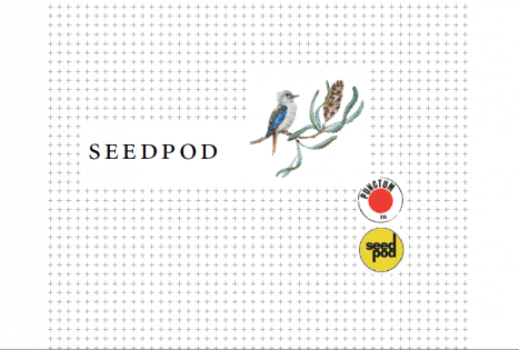 Seedpod at the Phee