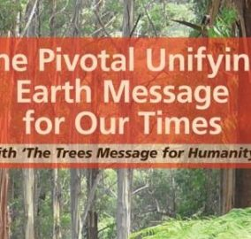 The Trees Message for Humanity